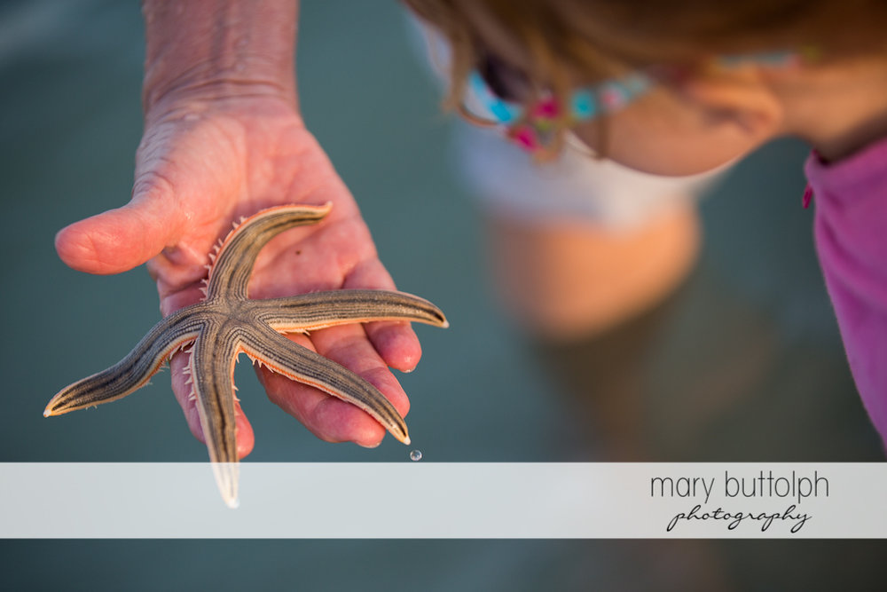 Girls examines the starfish a man caught on the beach at Sanibel Island Vacation