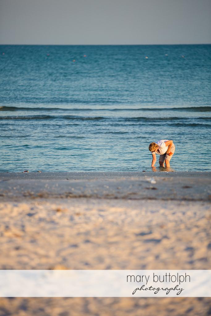 Woman looks for seashells on the beach at Sanibel Island Vacation