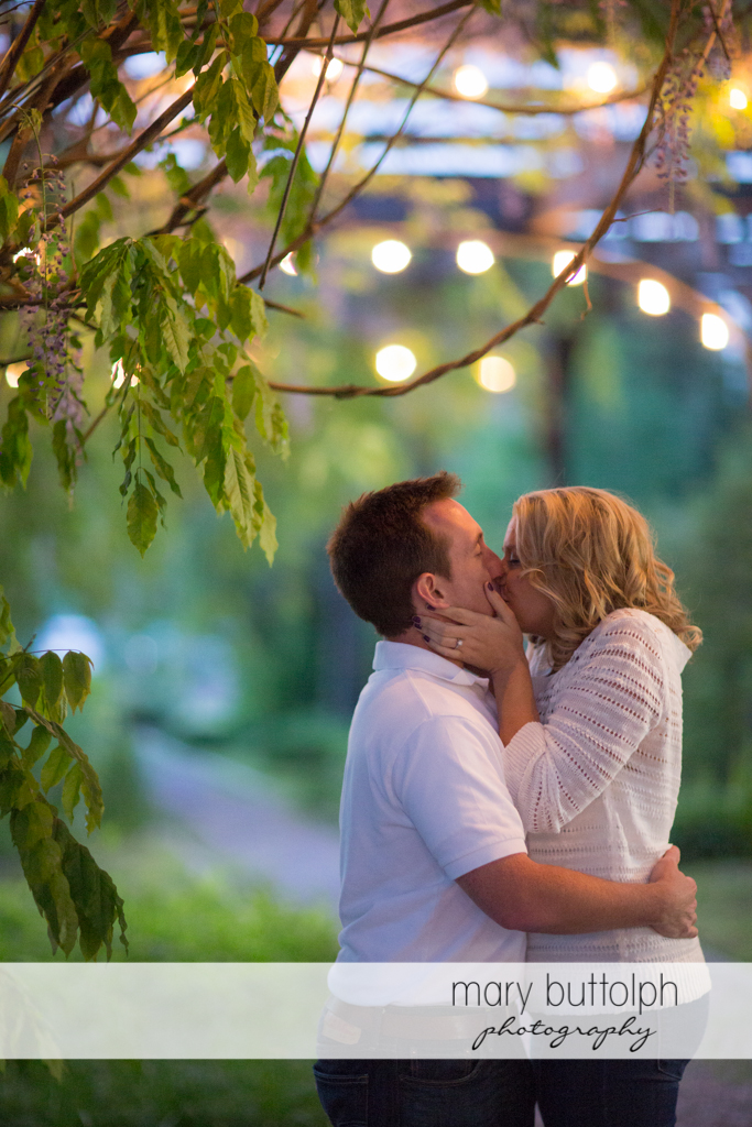 Couple kiss under a tree at Skaneateles Engagement