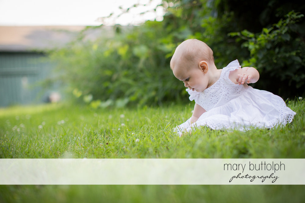 Baby plays in te garden at Skaneateles Family
