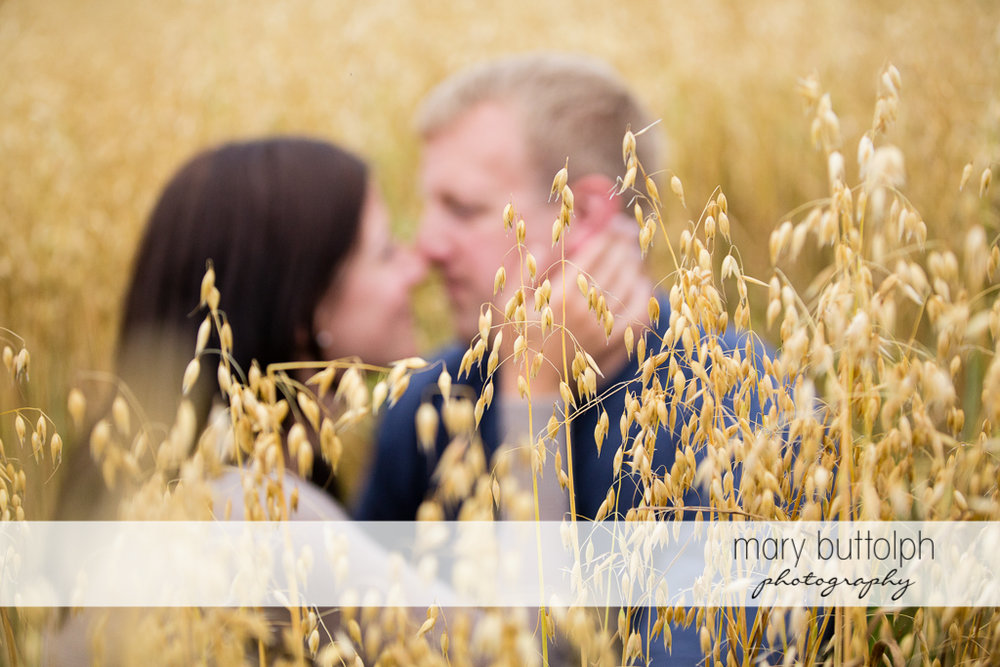 Couple share a romantic moment in the field at Skaneateles Farm Engagement