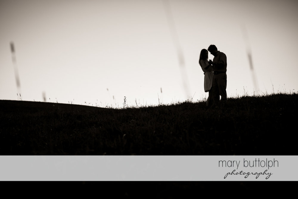 Couple catch the last rays of the sun in the field at Skaneateles Engagement