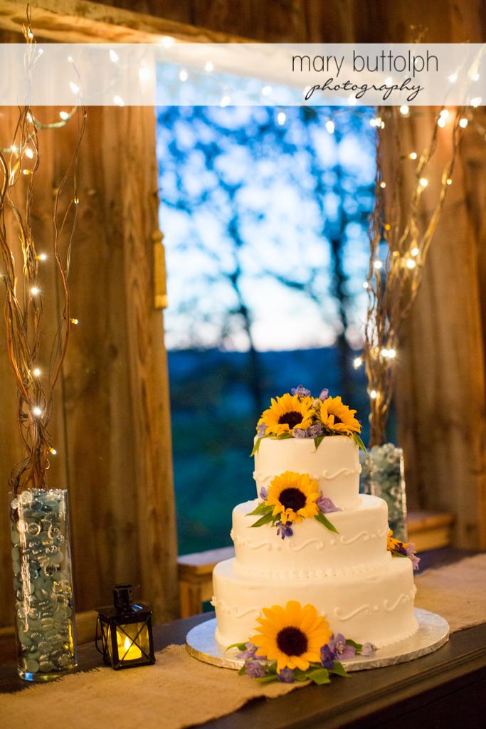 Fingerlakes Wedding Photographer-027