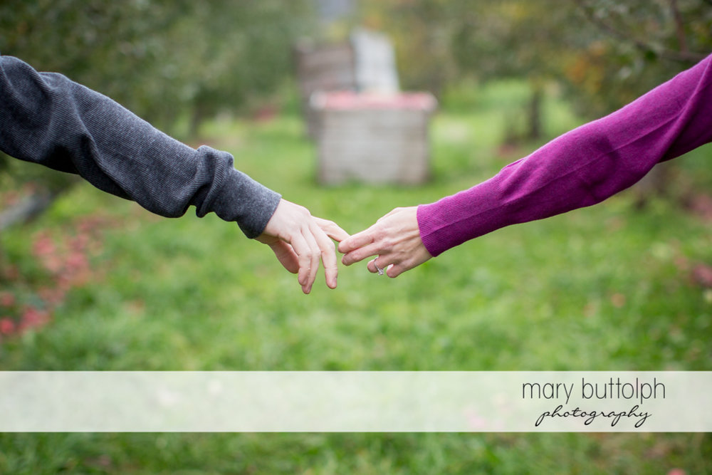 Couple hold hands in the garden at Beak & Skiff Apple Orchards Engagement