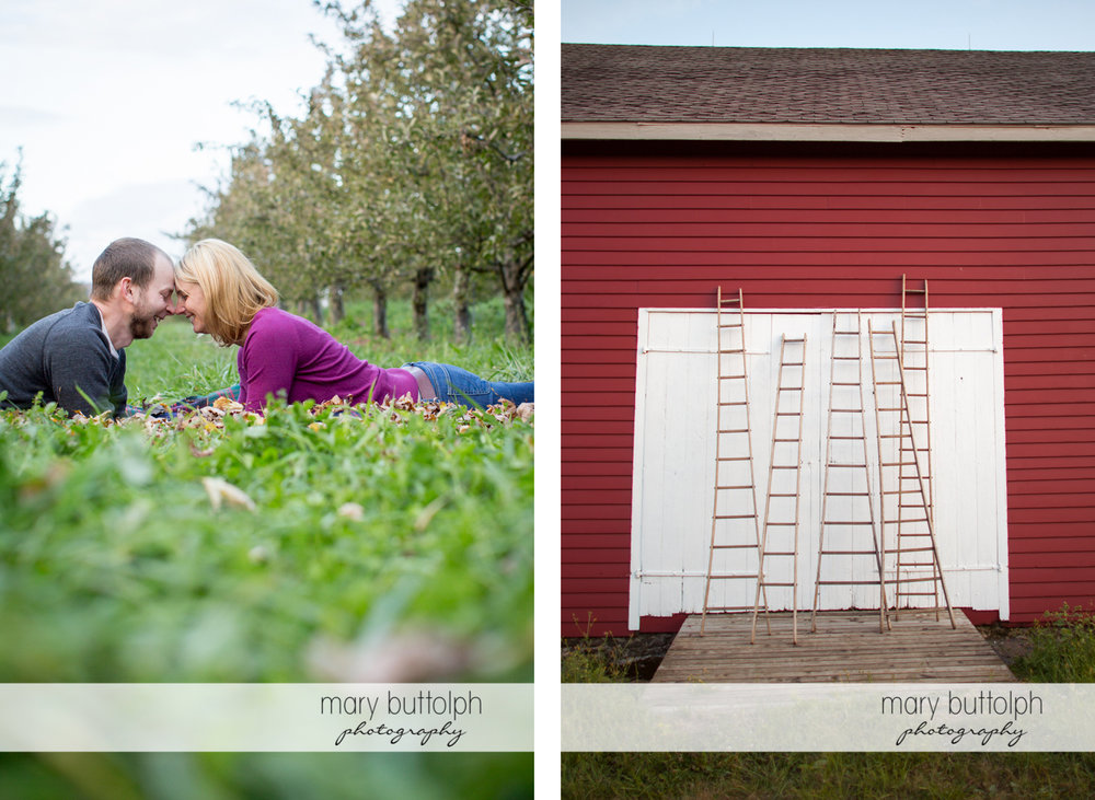 Couple rub noses in the garden while ladders lean on the barn door at Beak & Skiff Apple Orchards Engagement