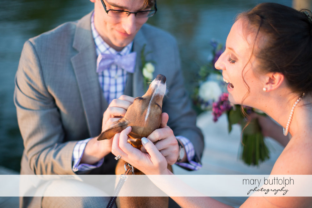 Couple play with their pet dog at the Inns of Aurora Wedding