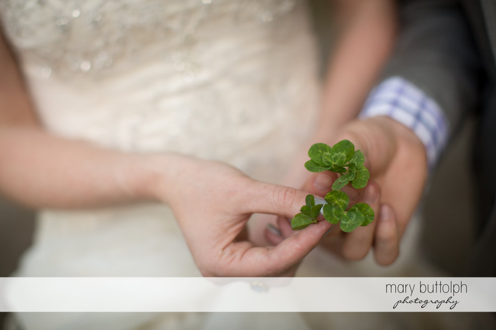Couple hold a small plant at Taughannock Falls Wedding