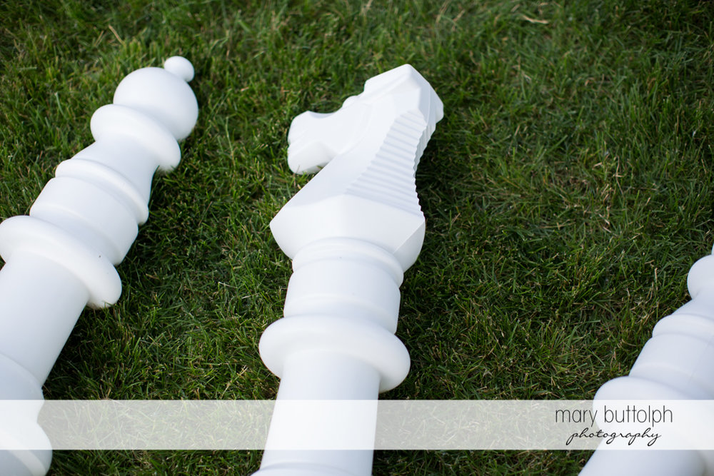 Chess pieces on the grass at the Inns of Aurora Wedding