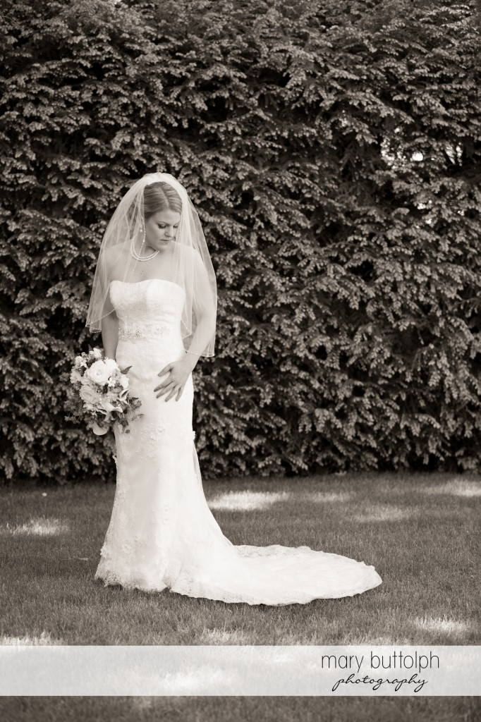 Bride in front of a wall of plants at Emerson Park Pavilion Wedding