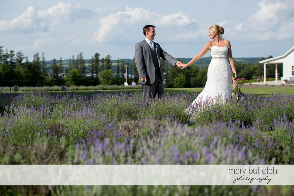 Couple hold hands on a field with lavenders at the Sherwood Inn Wedding