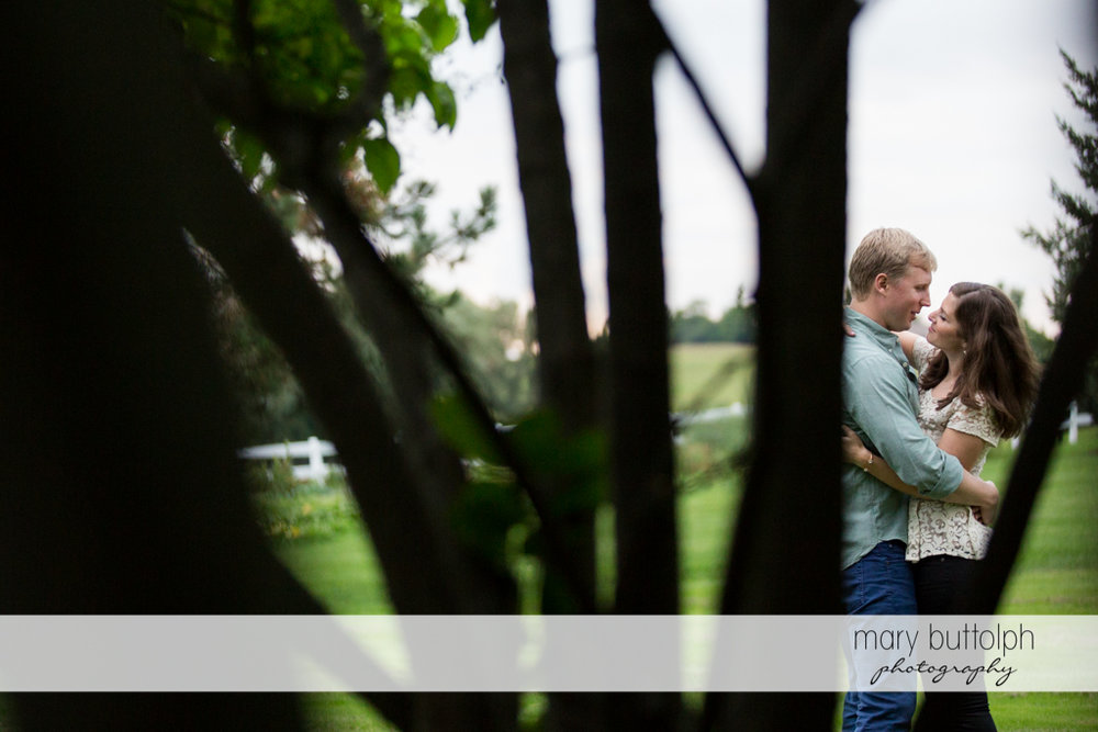 Couple as seen through the trees at Hobbit Hollow House Engagement