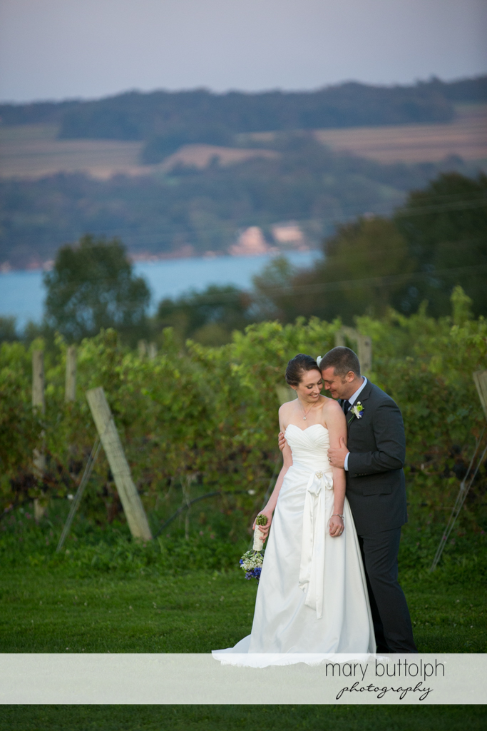 Couple pose in the vineyard at Anyela's Vineyards Wedding