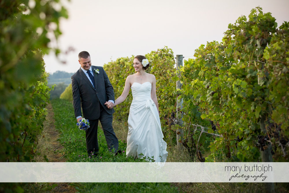 Couple hold hands while strolling in the vineyards at Anyela's Vineyards Wedding