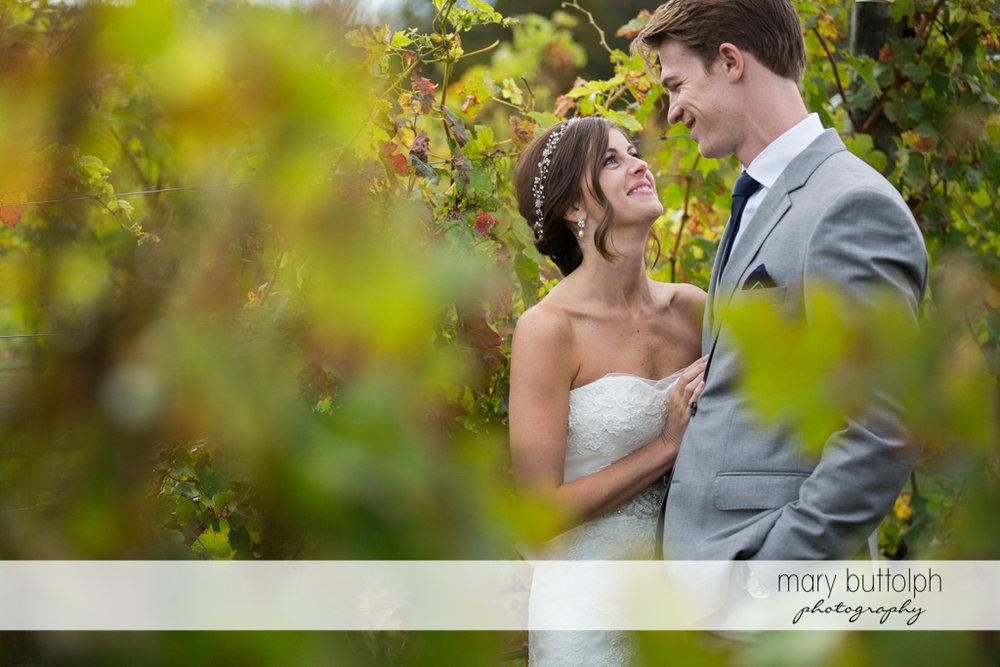 Couple pose in the vineyard at Anyela's Vineyards Wedding
