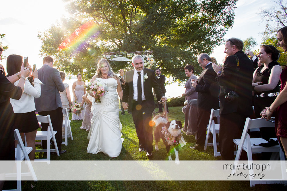 Couple with their pet dog are applauded by guests after the garden wedding at the Inns of Aurora Wedding