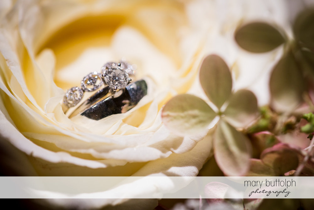 Close up shot of the couple's wedding rings on a flower at the Inns of Aurora Wedding