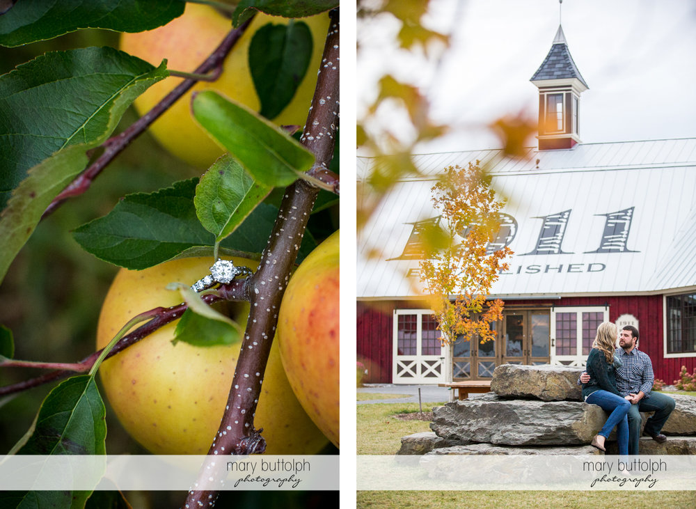 Close up shot of apples while the couple sit in front of an old building at Beak & Skiff Apple Orchards Engagement
