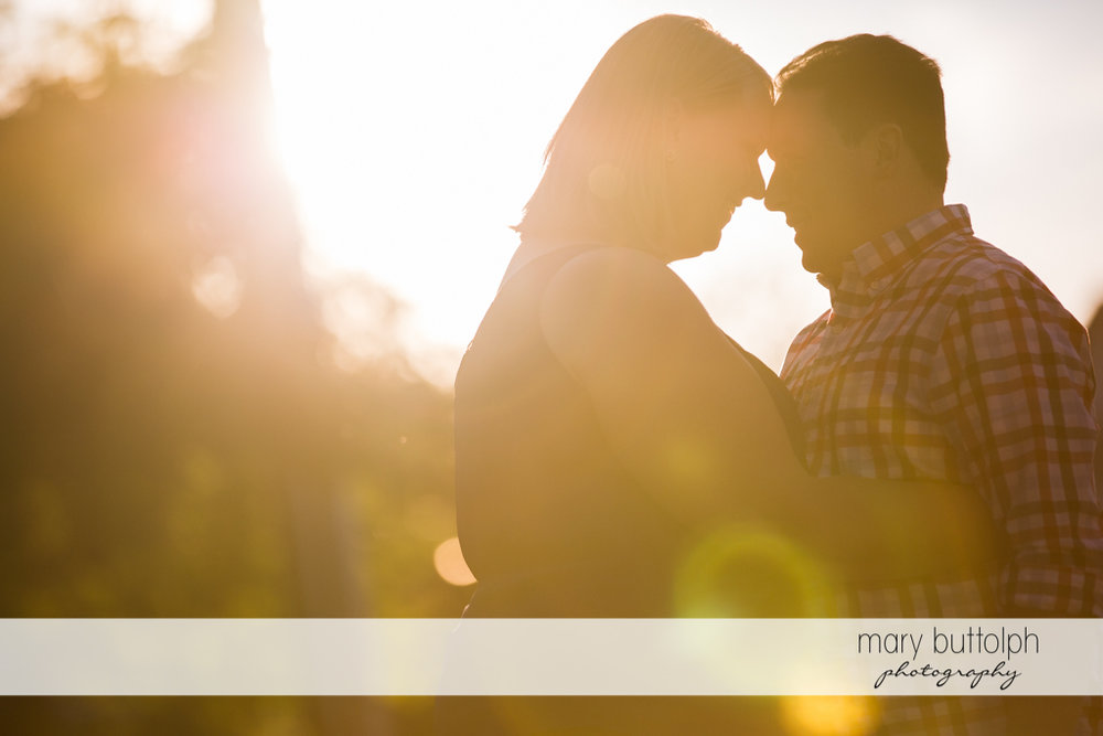 Couple view the sunset in the park at Skaneateles Lake Engagement