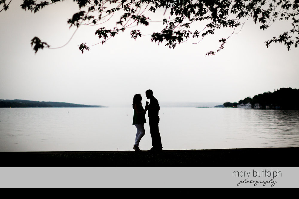 Couple in dramatic shot by the lake at Skaneateles Engagement