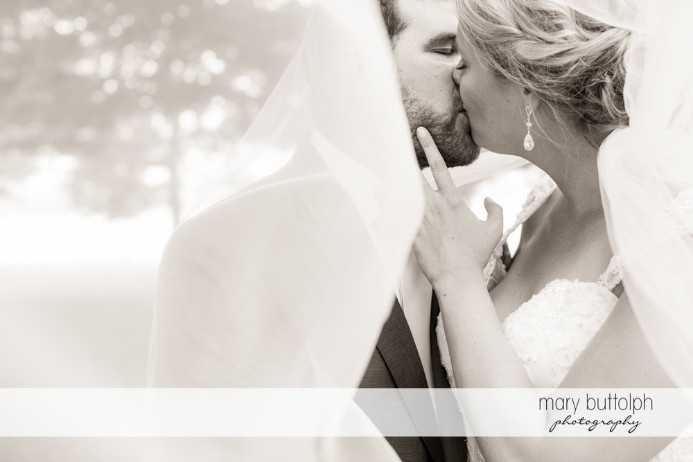 Couple kiss under the wedding veil at Emerson Park Pavilion Wedding