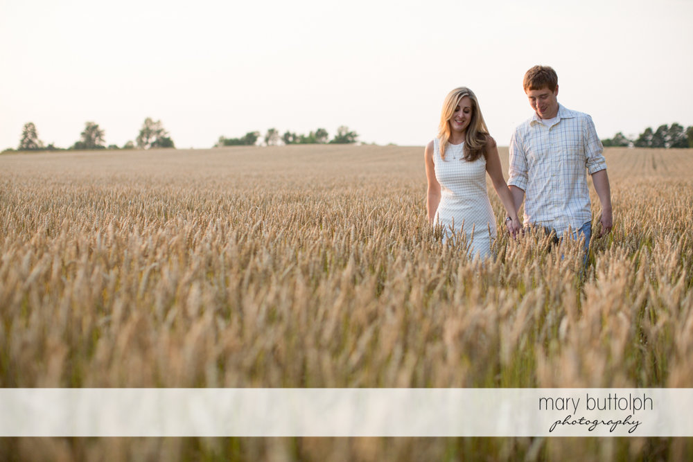 Couple cross a wheat field at Skaneateles Engagement