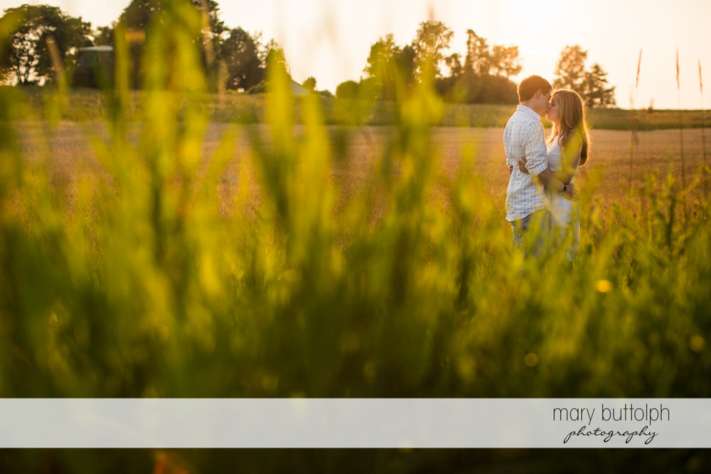 Couple kiss in the background beneath the sun at Skaneateles Engagement