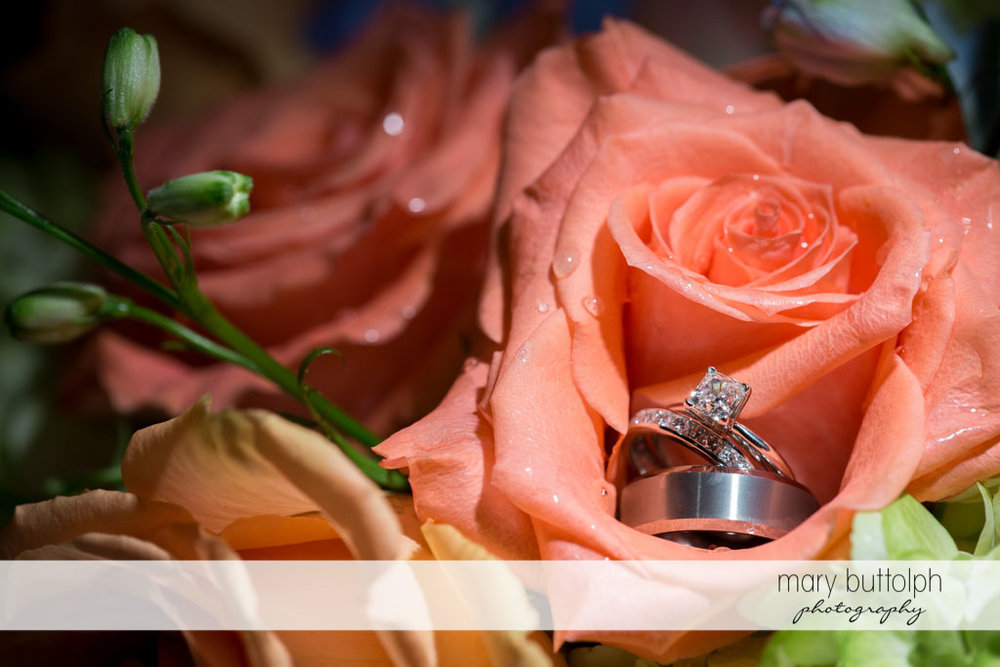 Close up of couple's wedding rings in a flower at Turning Stone Resort Casino Wedding