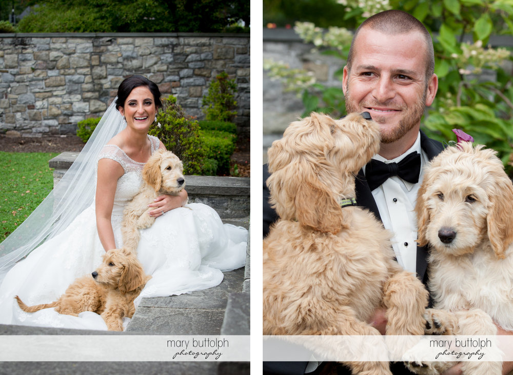 Couple pose with their pet dogs at Anyela's Vineyards Wedding