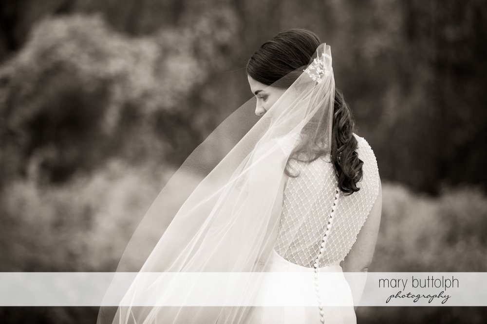 Bride turns her back to the camera in this dramatic black and white shot at the Frog Pond Bed & Breakfast Wedding