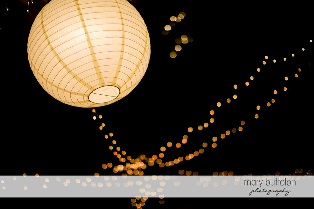 Paper lanterns light up the night at the Frog Pond Bed & Breakfast Wedding
