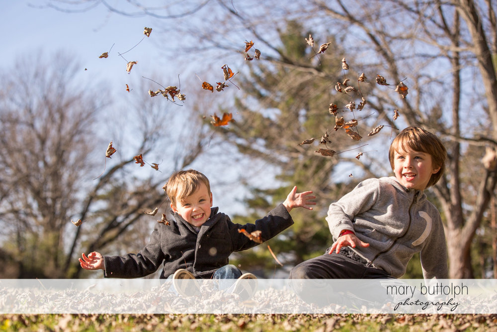 Brothers play with leaves in the backyard at Skaneateles
