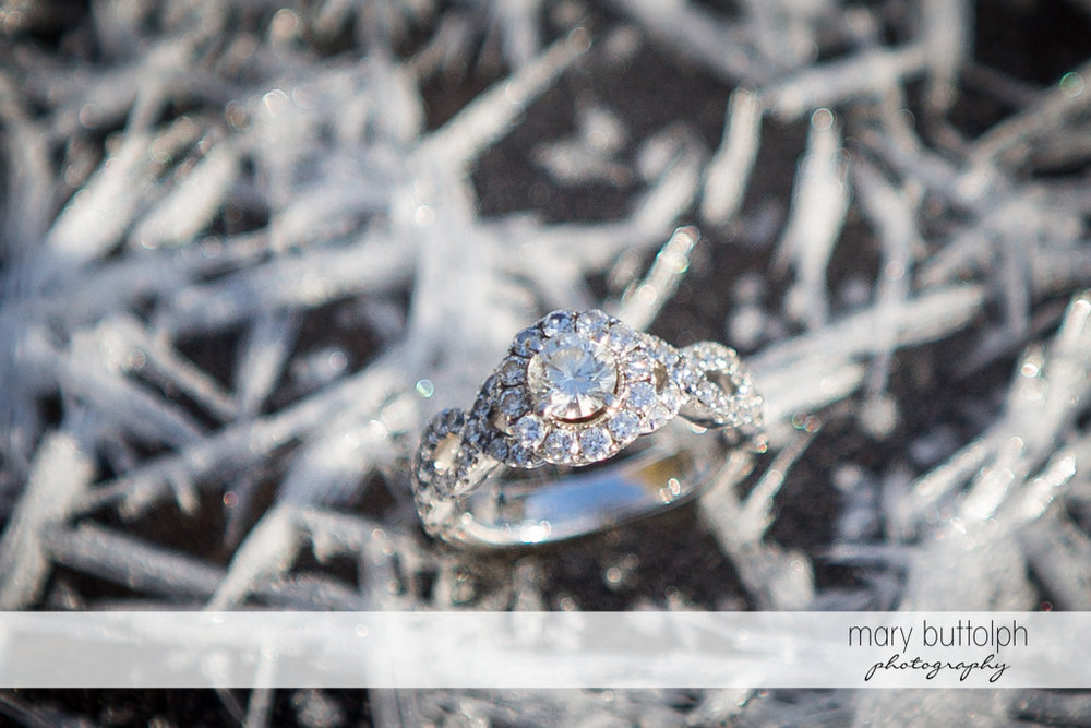 Woman's engagement ring stands out at Green Lakes Engagement