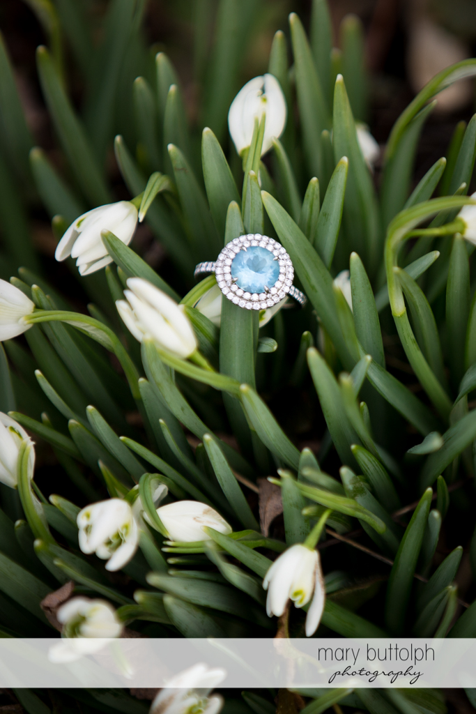 Woman's engagement ring among the flowers at Skaneateles Engagement