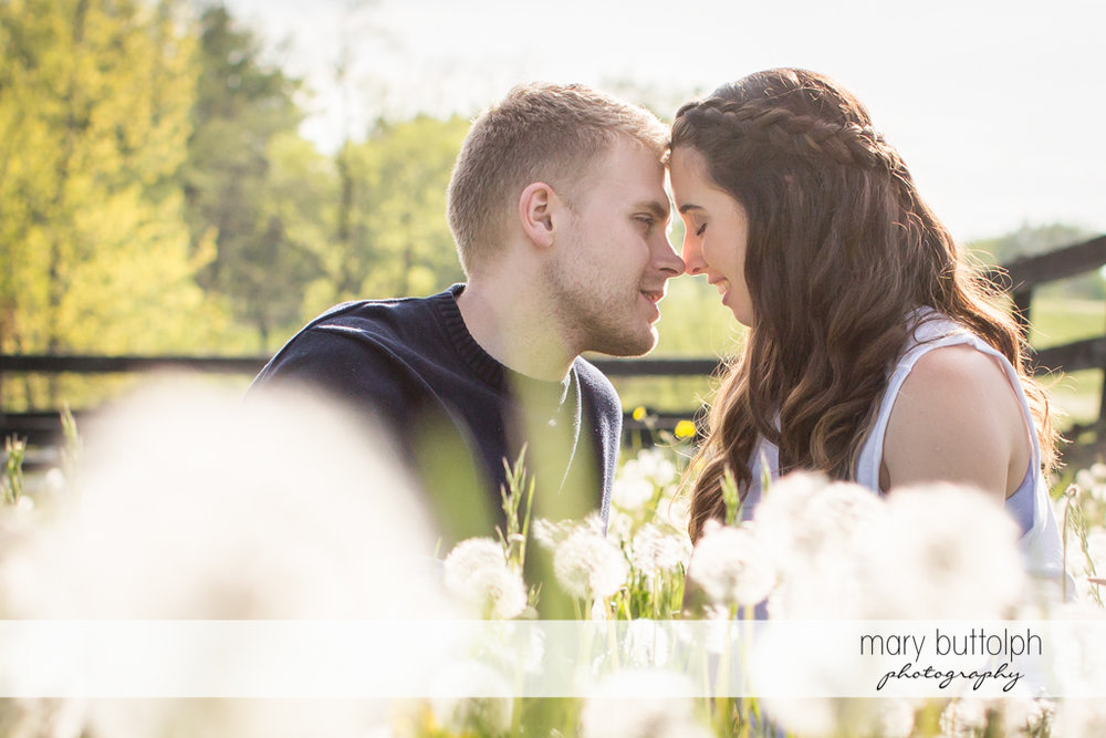 Couple surrounded by flowers in a garden at Hobbit Hollow Engagement