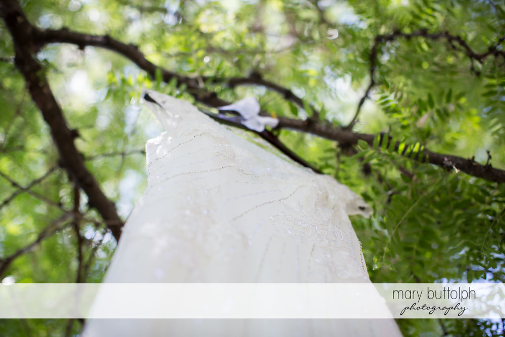 Worm's-eye view of the bride's wedding dress in the garden at the Inns of Aurora Wedding