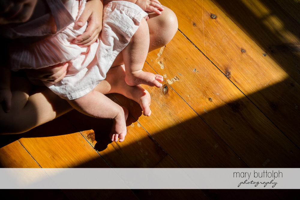 Overhead shot of baby sister sitting on her brother's lap at Skaneateles
