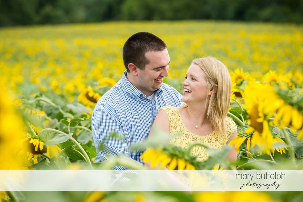 Couple find love in a sunflower garden at Syracuse Engagement