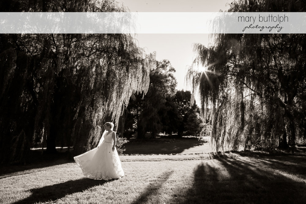 Bride in dramatic black and white shot in the park at SKY Armory Wedding