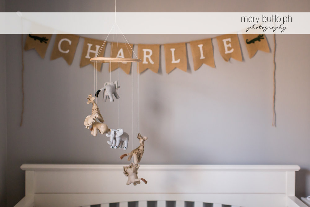 Animal-themed crib toys at Skaneateles Newborn