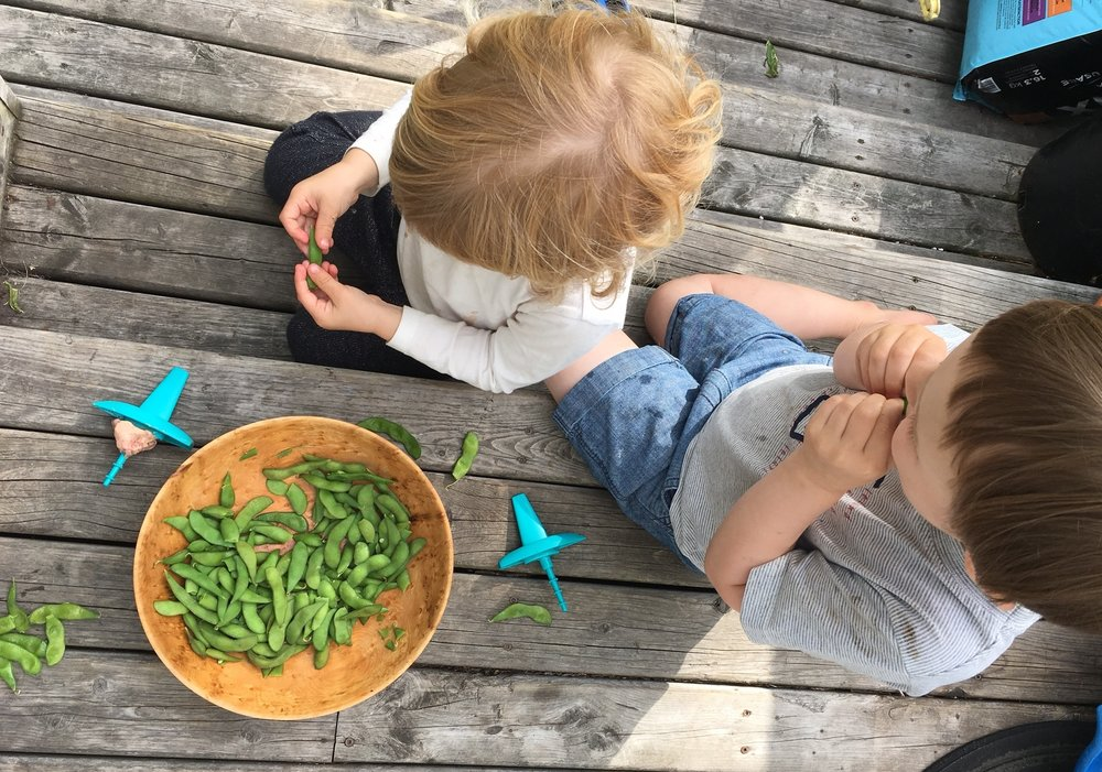 Trying edamame on the back deck