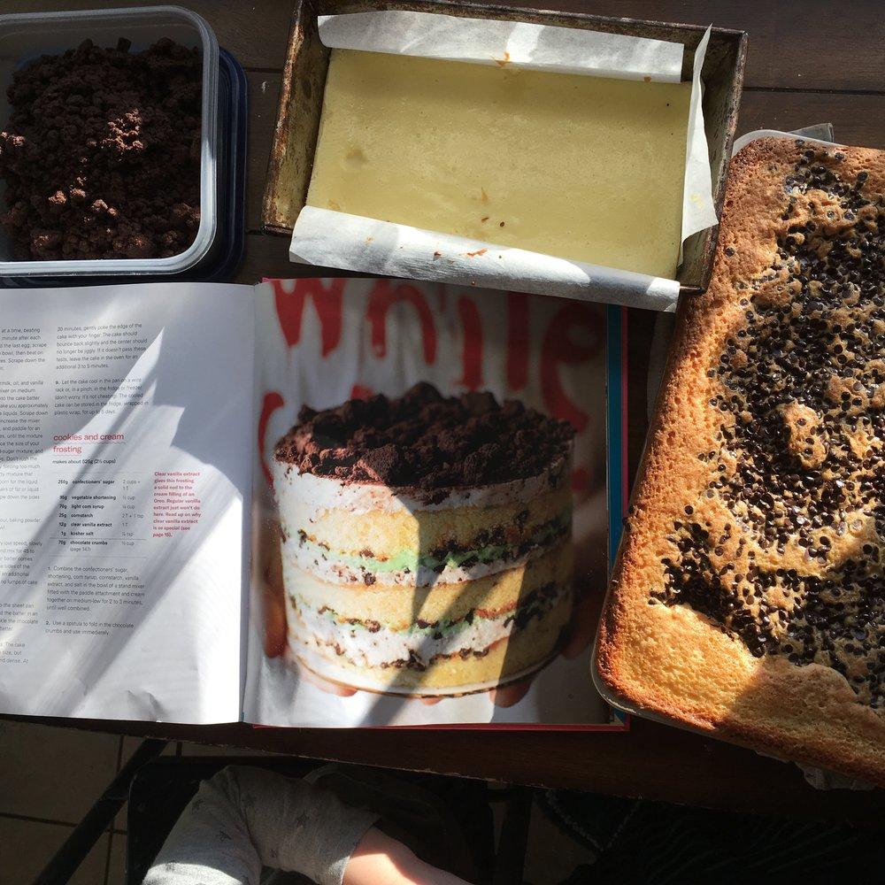 Crumbs, cheesecake, chocolate chip cake