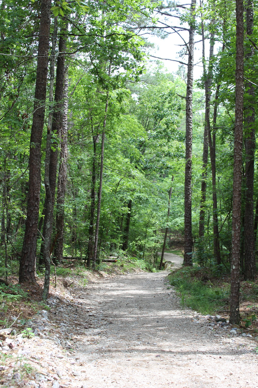 Cedar Creek Trail
