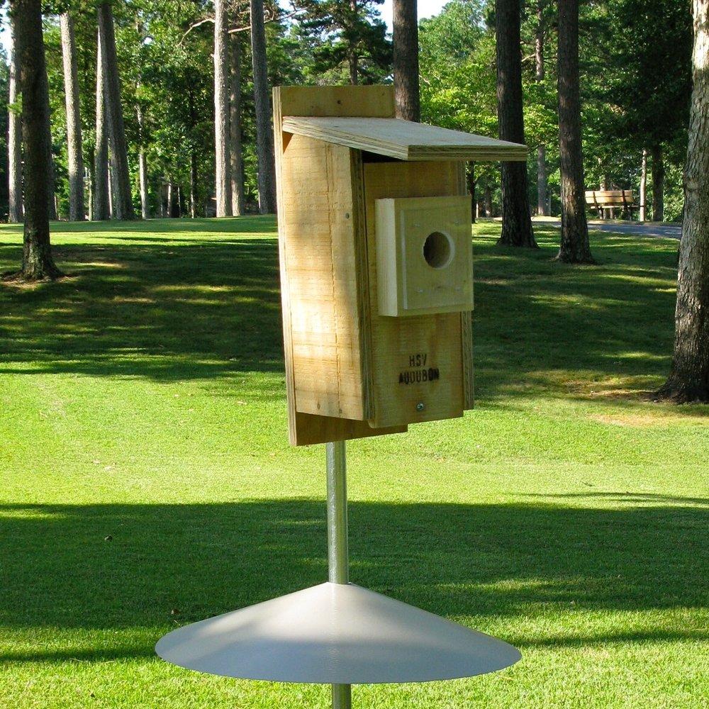 Nest Box.jpg