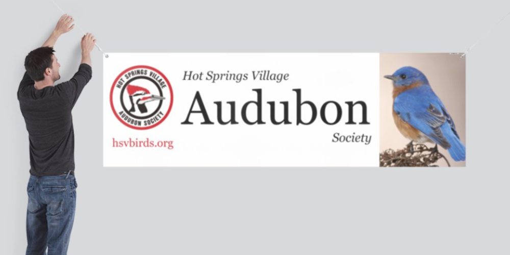Audubon banner.png