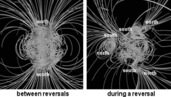 Magnetic Polar shift.jpg
