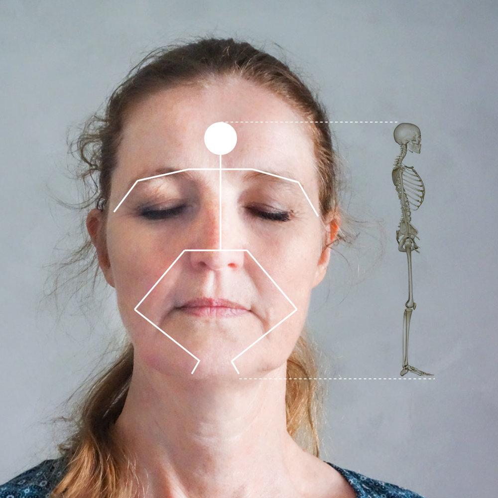 ANSIGTETS-MAGISKE-PUNKTER-refleksterapi.jpg