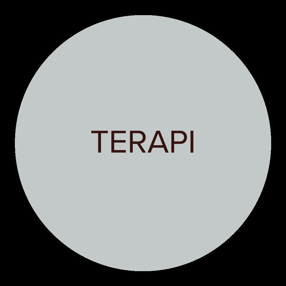 TERAPI.png