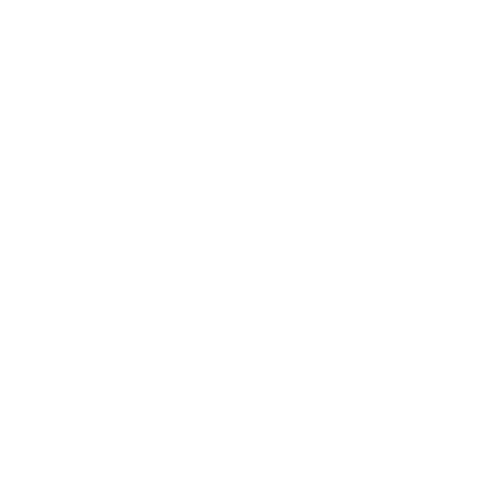 THE TORONTO MAGIC COMPANY