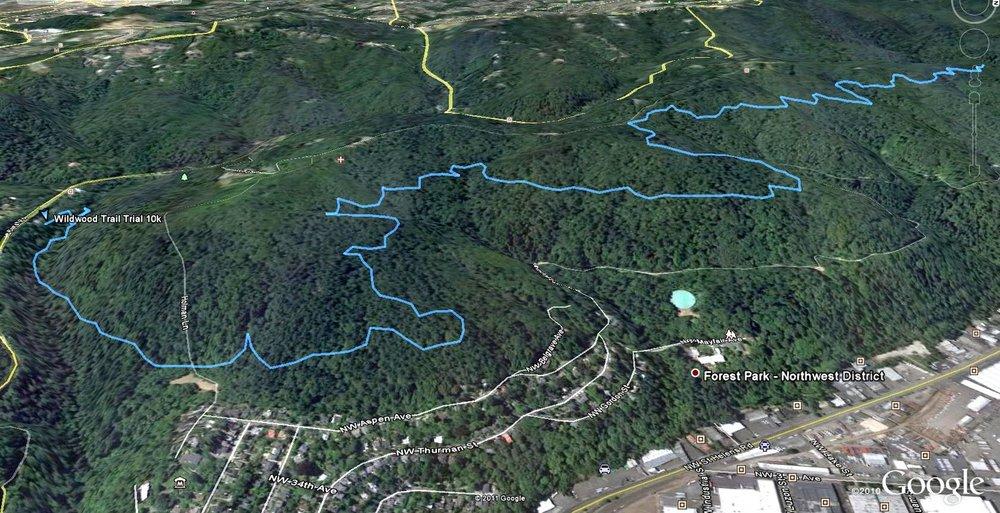 Wildwood Trail Trial Ortho 02.jpg