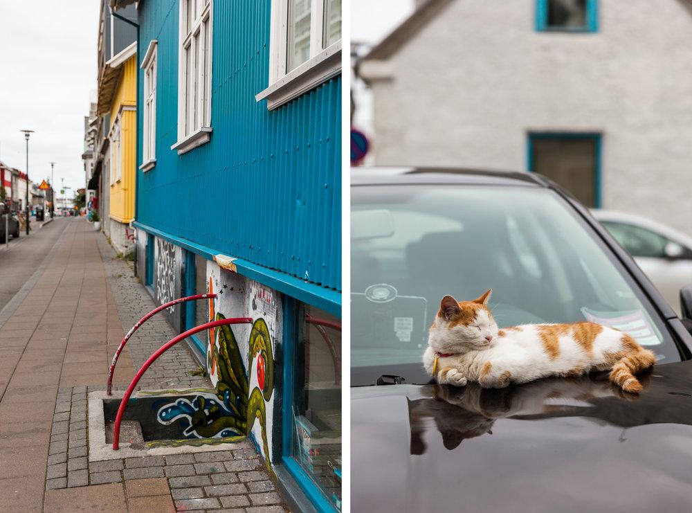 Reykjavik-18 copy.jpg